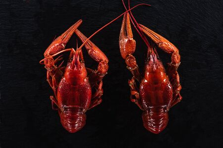 top view of red lobsters on black surface Stockfoto