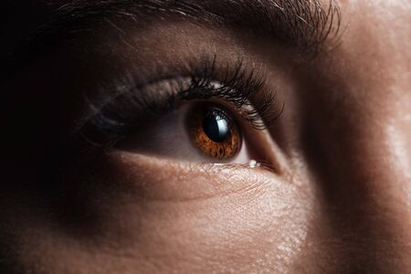 close up view of adult woman brown eye looking away in darkness Stock fotó