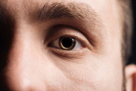 close up view of human eye with eyelashes and eyebrow looking at camera
