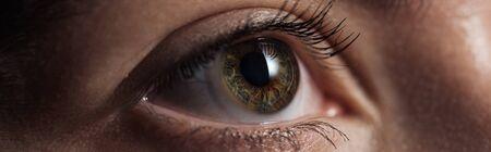 close up view of human green eye looking away in dark, panoramic shot