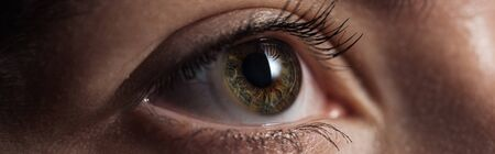 Nahaufnahme des menschlichen grünen Auges, das in einer dunklen Panoramaaufnahme wegschaut