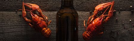 panoramic shot of red lobsters and glass bottle with beer on wooden surface Stock Photo