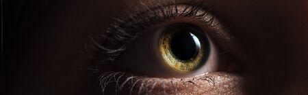 close up view of human bright eye looking away in dark, panoramic shot Stock fotó