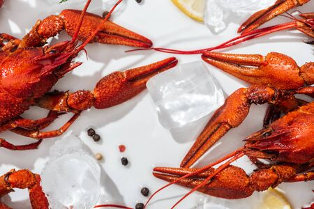 top view of red lobsters, pepper and lemon slices on white background