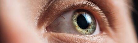 close up view of human green clear eye looking away, panoramic shot Stock fotó