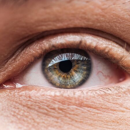 close up view of human colorful eye with eyelashes