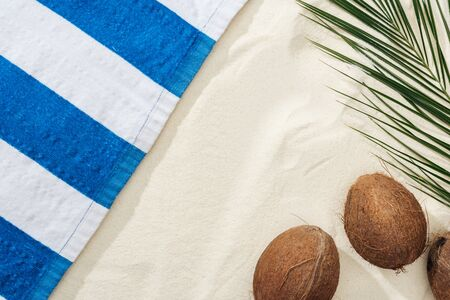 top view of palm leaf, coconuts and striped towel on sand