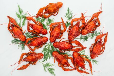 top view of red lobsters and green herbs on white background