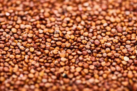 close up view of raw organic red quinoa