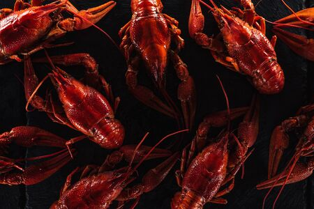 top view of red lobsters on black surface Banco de Imagens