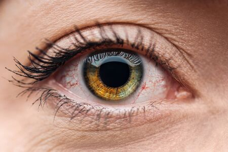 Nahaufnahme des menschlichen braunen und grünen bunten Auges mit Wimpern Standard-Bild