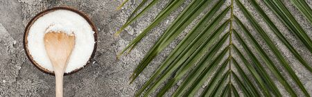 top view of coconut shavings with wooden spoon on grey textured background with palm leaf, panoramic shot