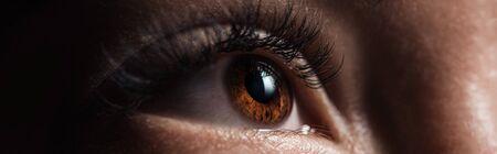 Vista de cerca del ojo marrón humano con pestañas largas mirando hacia otro lado en la oscuridad, toma panorámica
