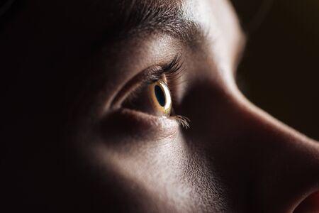 Vista de cerca del ojo de la mujer joven con pestañas y cejas mirando a otro lado en la oscuridad