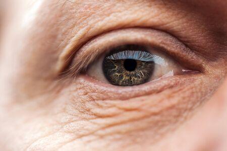 Vista de cerca del ojo del hombre mayor con pestañas y cejas mirando a la cámara Foto de archivo