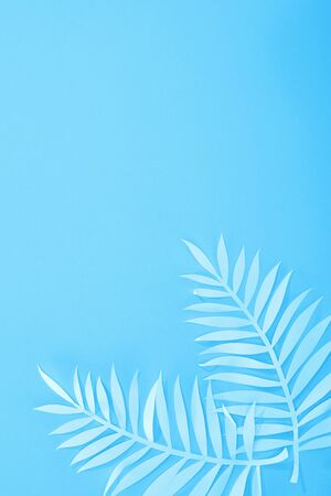 top view of paper leaves on blue minimalistic background with copy space