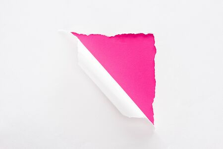 white torn and rolled paper on crimson colorful background