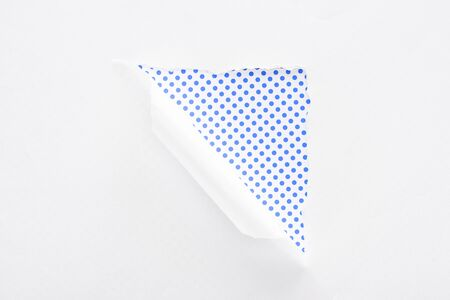 white torn and rolled paper on polka dot blue and white background Banque d'images - 130441154