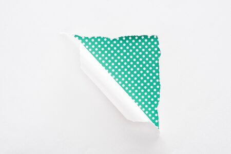 white torn and rolled paper on colorful dotted green background 스톡 콘텐츠 - 130442617