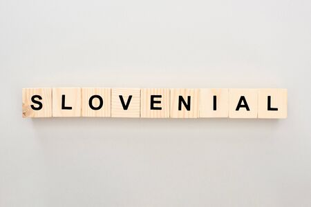 Slovenial word made on wooden cubes Imagens