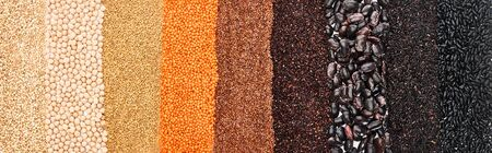 panoramic shot of assorted black beans, rice, quinoa, red lentil, buckwheat and chickpea
