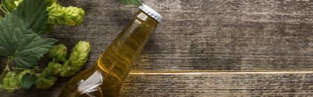 top view of beer in bottle with green hop on wooden background, panoramic shot