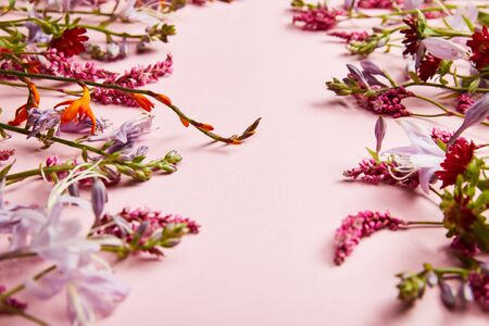diverse fresh wildflowers on pink background with copy space