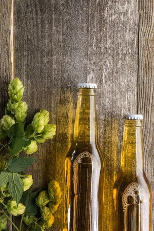 top view of beer in bottles with green hop on wooden background with copy space