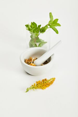 mortar and pestle with herbal mix near goldenrod twig and glass with fresh mint on white background