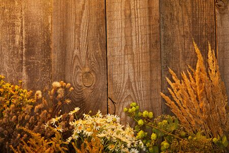 top view of wildflowers and herbs on wooden surface