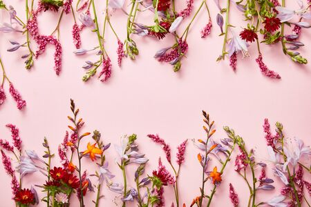 twigs of wildflowers on pink background with copy space