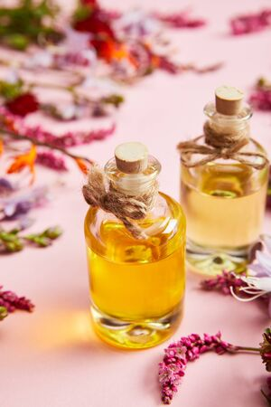 close up view of bottles with oil near fresh wild flowers on pink background