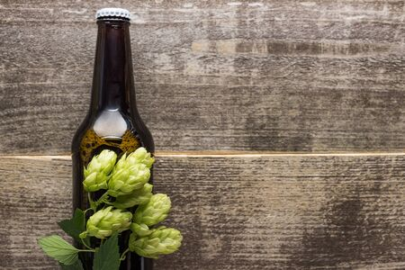 top view of fresh beer in bottle with green hop on wooden surface Stock Photo