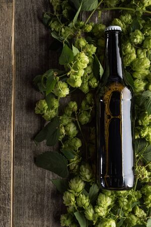 top view of beer in brown bottle on green hop on wooden background