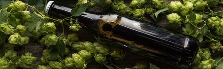top view of beer in brown bottle near green hop on wooden background, panoramic shot Stock Photo