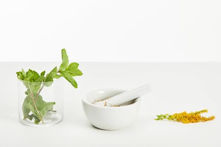 mortar and pestle near goldenrod twig and glass with fresh mint on white background Stock fotó