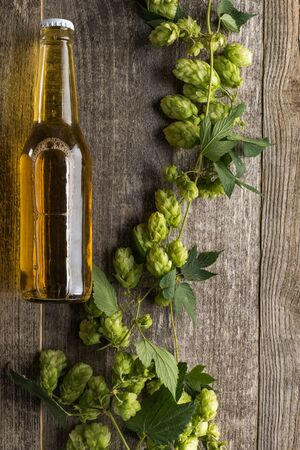 top view of beer in bottle with green hop on wooden background Stock Photo