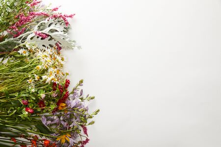 top view of wildflowers and herbs on white background Imagens