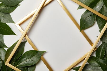 empty golden frames on white background with copy space and green wet leaves 写真素材