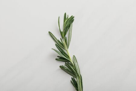 Top view of fresh rosemary twig on white background Imagens