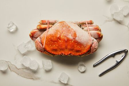 top view of frozen raw crab near seafood cracker and scattered ice cubes on marble surface