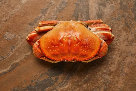 top view of  frozen raw crab with solid shell on textured surface