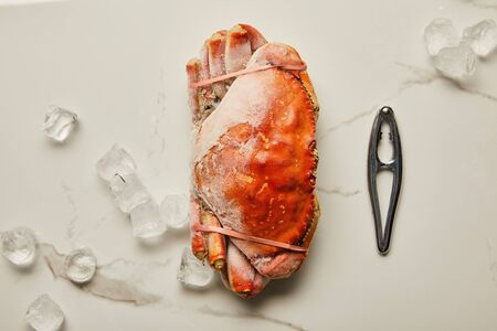 top view of frozen uncooked crab near seafood cracker and scattered ice cubes on marble surface