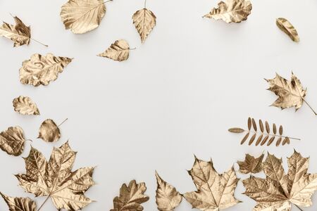 vista dall'alto del fogliame dorato su sfondo bianco