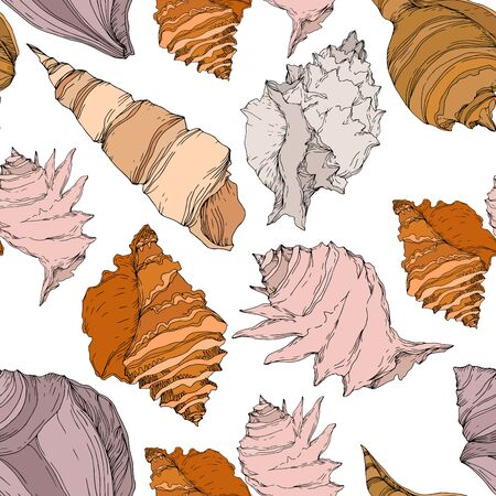 Summer beach seashell tropical elements. Black and white engraved ink art. Seamless background pattern. Fabric wallpaper print texture on white background. Illustration