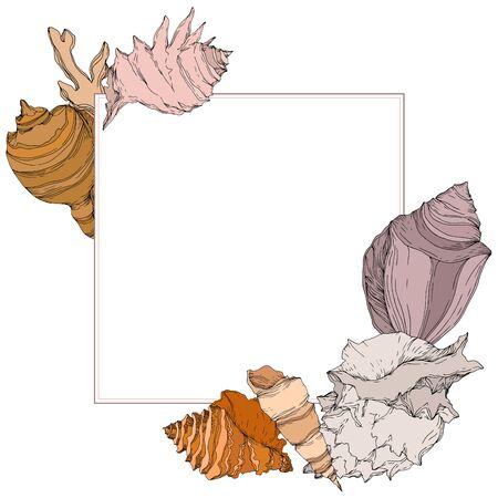 Summer beach seashell tropical elements. Black and white engraved ink art. Frame border ornament square on white backgroud. Illustration