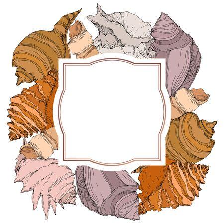Summer beach seashell tropical elements. Black and white engraved ink art. Frame border ornament square on white backgroud. 向量圖像
