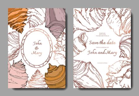 Summer beach seashell tropical elements. Black and white engraved ink art. Wedding background card decorative border. Thank you, rsvp, invitation elegant card illustration graphic set banner.