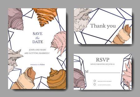 Summer beach seashell tropical elements. Black and white engraved ink art. Wedding background card decorative border. Thank you, rsvp, invitation elegant card illustration graphic set banner.