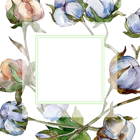 White cotton floral botanical flowers. Wild spring leaf wildflower.  background illustration set. Watercolour drawing fashion aquarelle. Frame border ornament square.